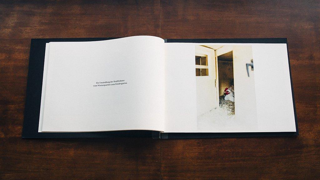 Magazin-Stadtpflanzer-09.jpg