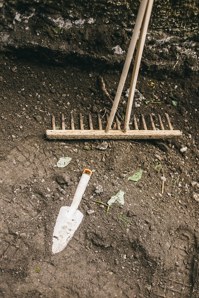 Brunnenbepflanzung-35-von-81.jpg