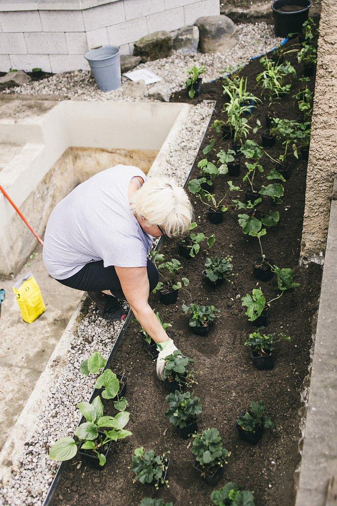 Brunnenbepflanzung-50-von-81.jpg